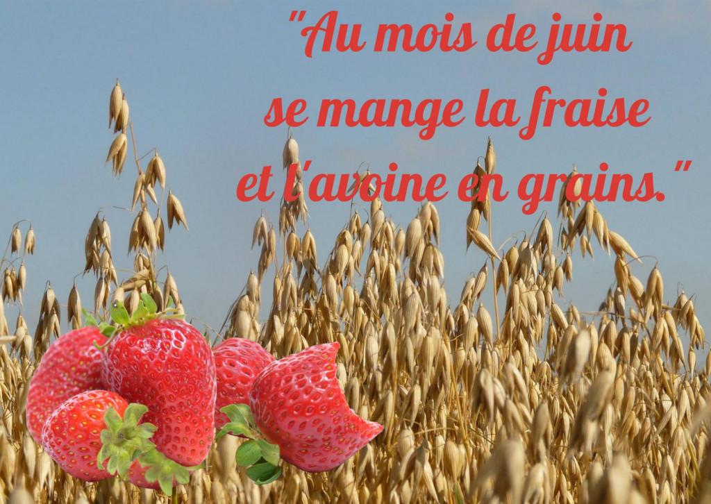 Juin fraise et avoine